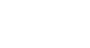 logo_bire_.png